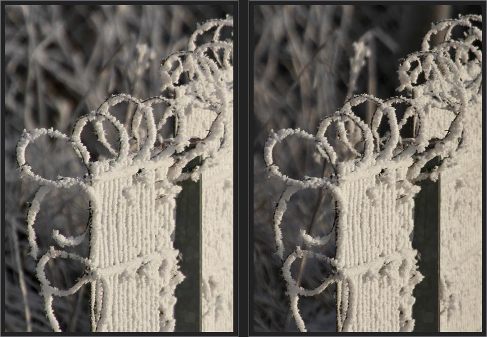 Eiskalt gesichert [3D]