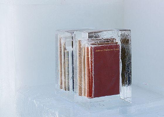 Eiskalte Literatur