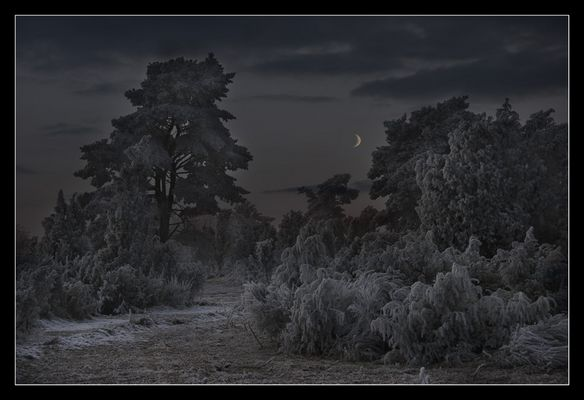Eiskalte Nacht