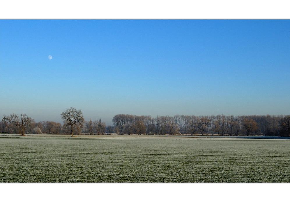 Eiskalte Parklandschaft