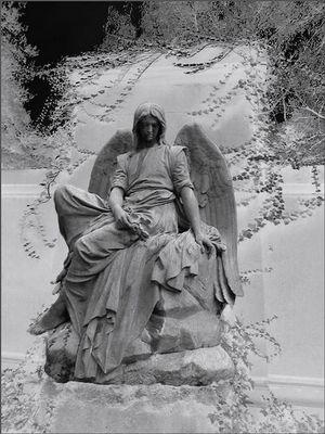 ... eiskalter Engel ...