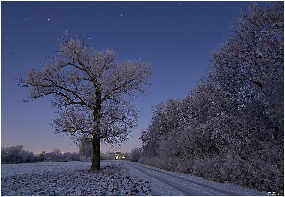 Eiskalter Morgen...