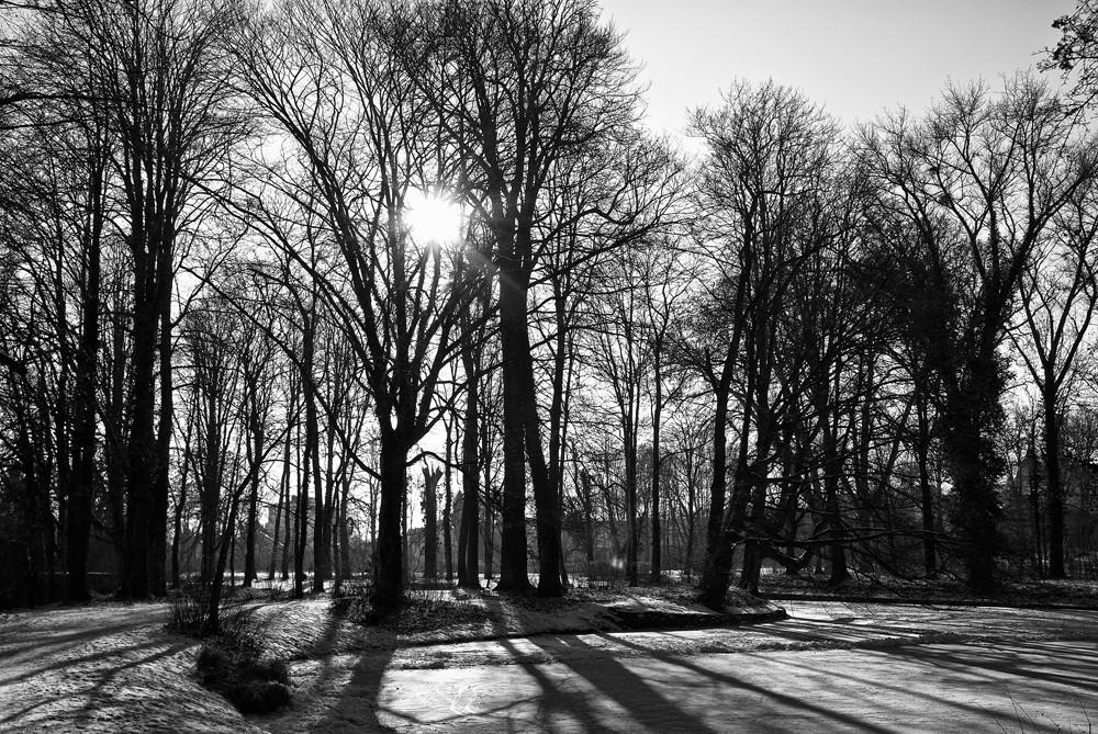 Eiskalter Wintertag in Herrnsheim