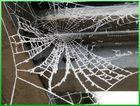 Eiskaltes Spinnennetz