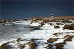 Eiskaltes Wattenmeer - Weltnaturerbe (2)