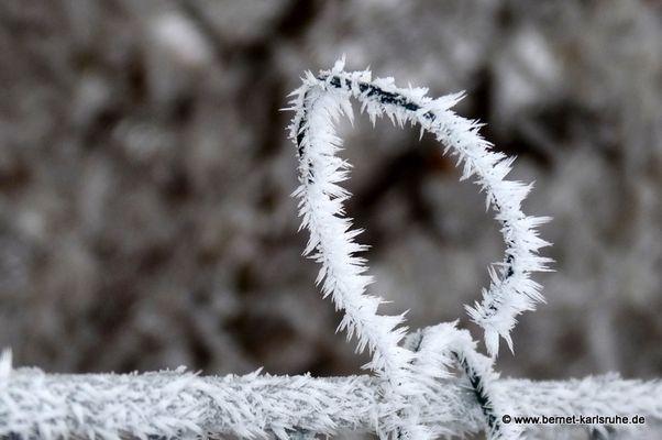 Eiskristalle auf Zaun