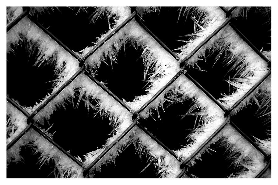 Eiskunst am Zaun