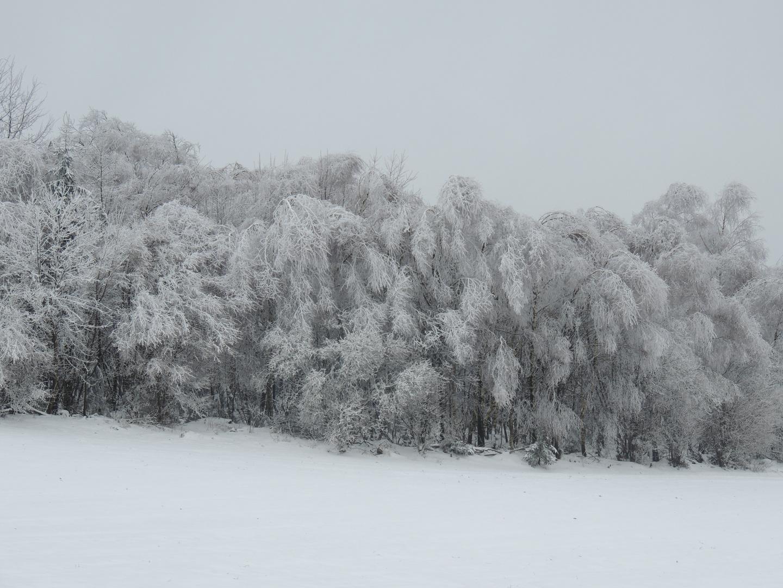 Eisregen und Schnee