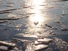 Eisschollen auf dem Tegeler See
