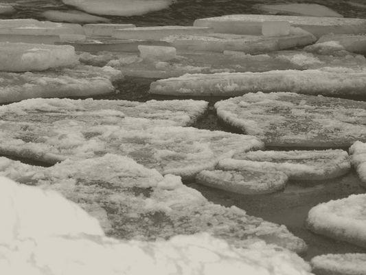 Eisschollen - Ostsee - Zinnowitz - Januar 2010