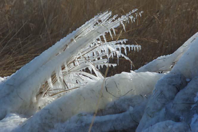 Eisskulptur aus Frost udn Sturm