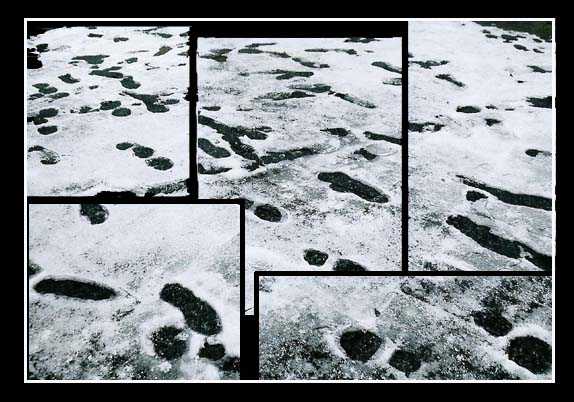 Eisspuren