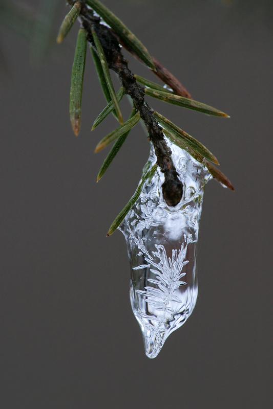 Eistropfenecho