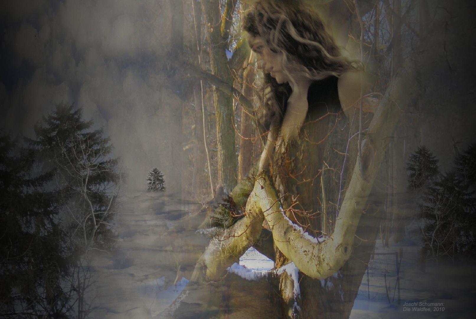 Eiswelt mit Waldfee