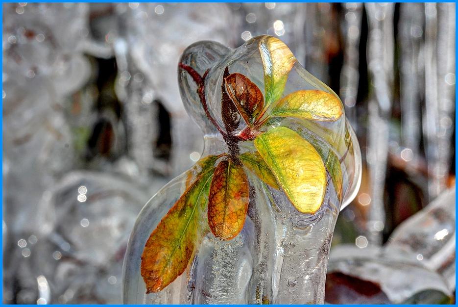 Eiszauber mit Herbstblättern Teil 3