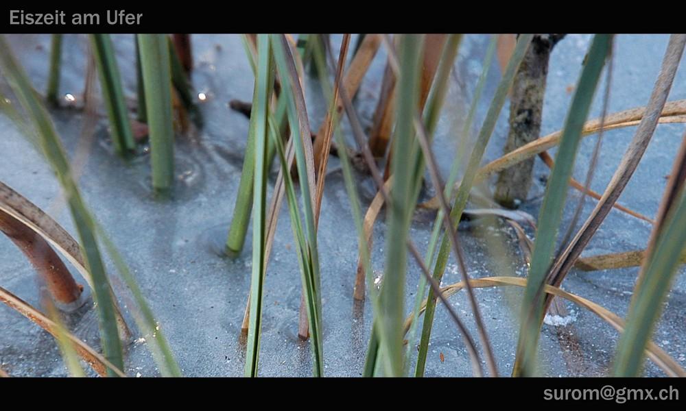 Eiszeit am Ufer