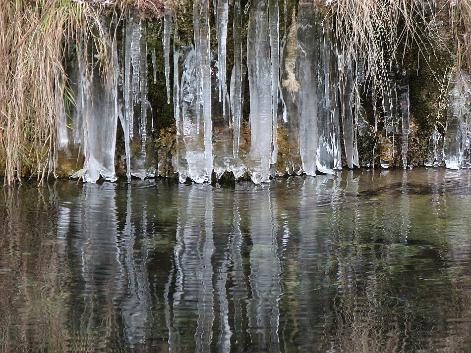 Eiszeit am Ufer der Aare1