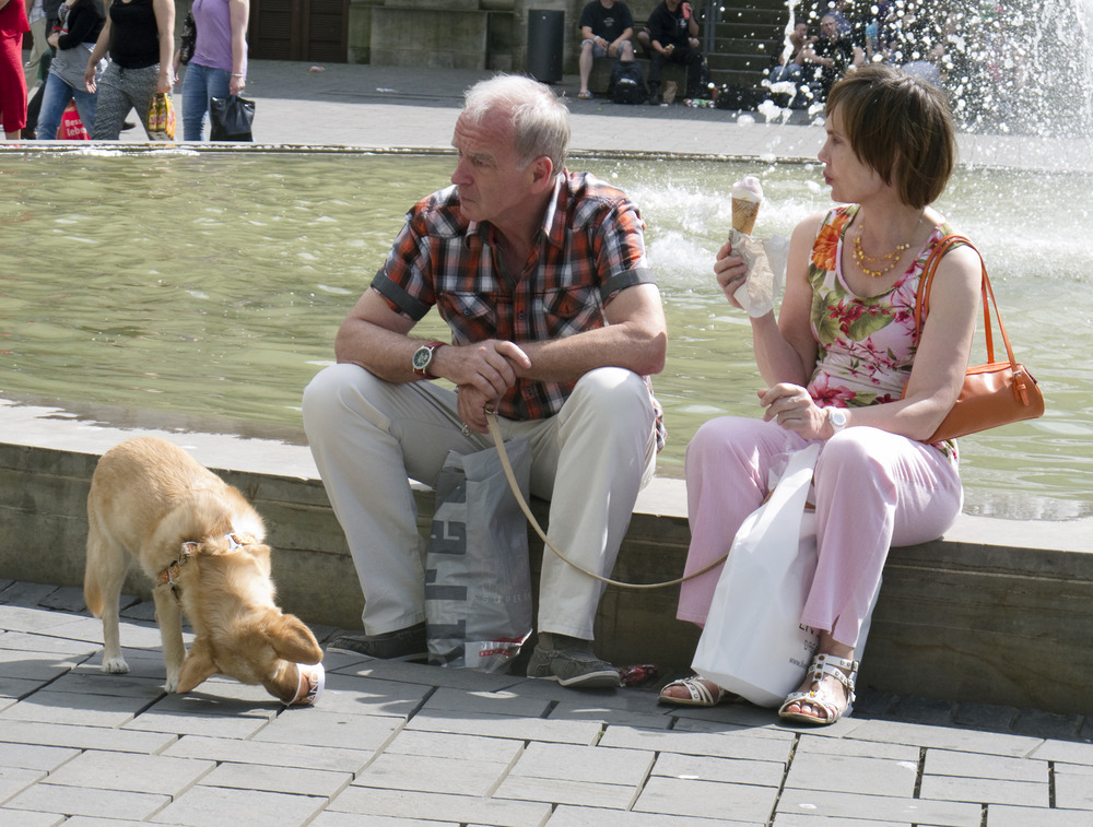 Eiszeit für Hund und Mensch