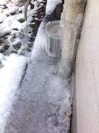 Eiszeit...ig in meinem Stadtgarten....