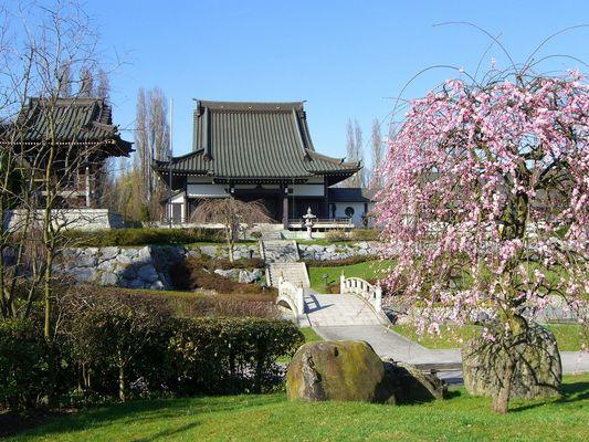 Eko-Haus der japanischen Kultur in Düsseldorf