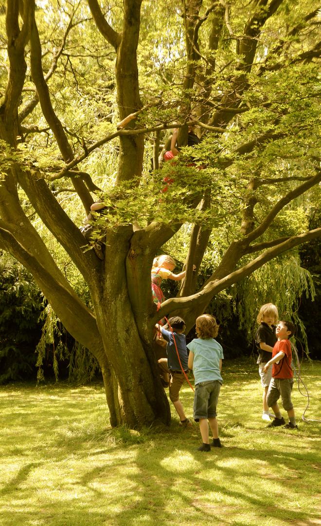"""""""El árbol de la vida"""""""
