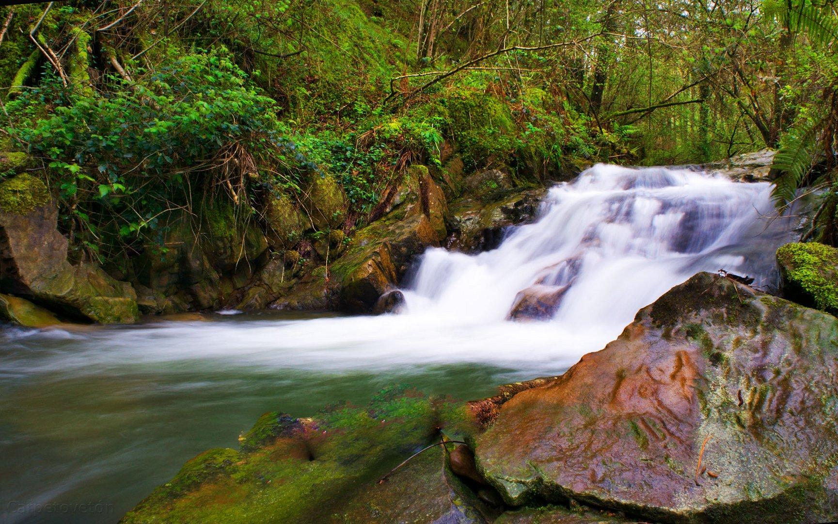 El arroyo de Callejamala