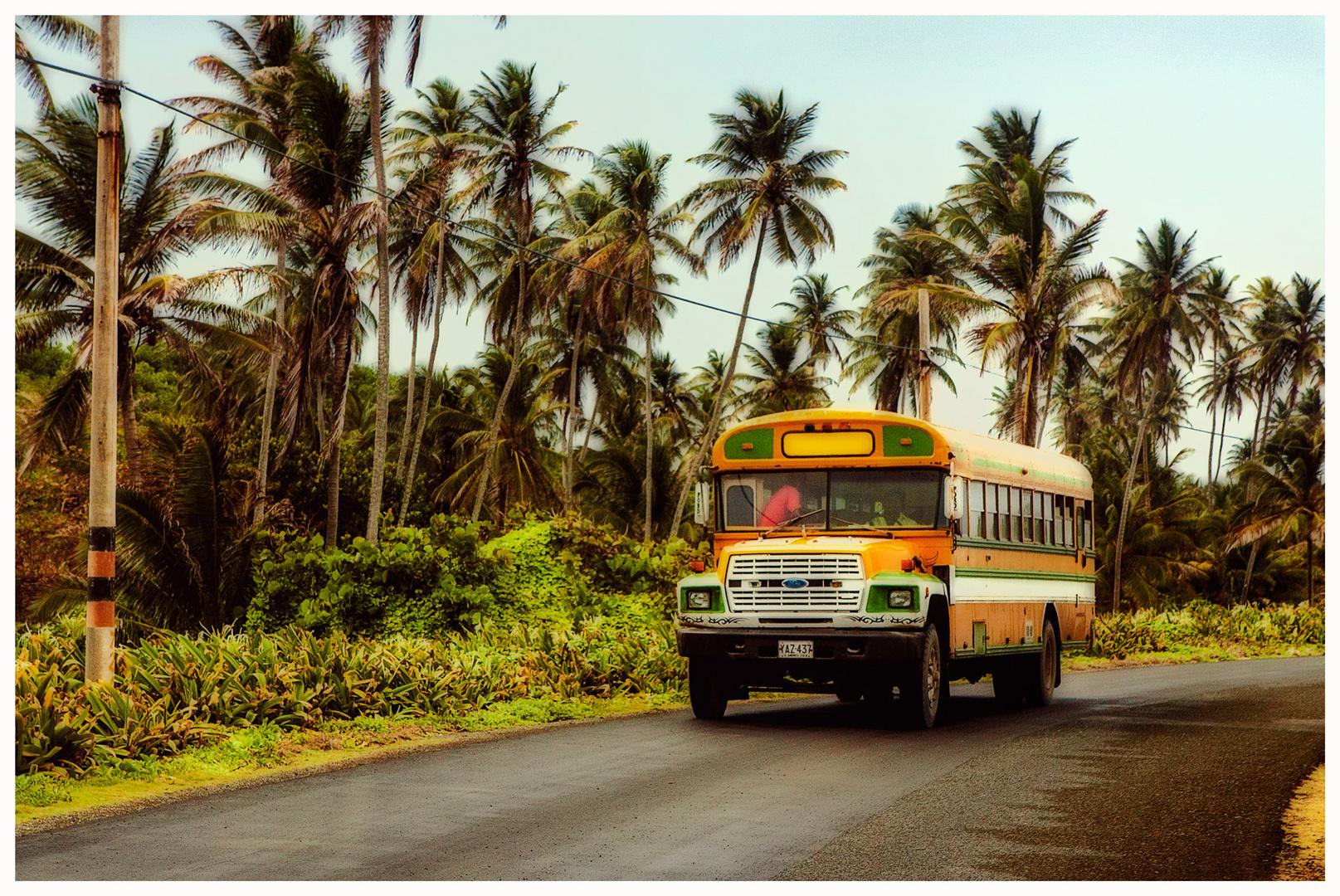 El Bus del Colegio