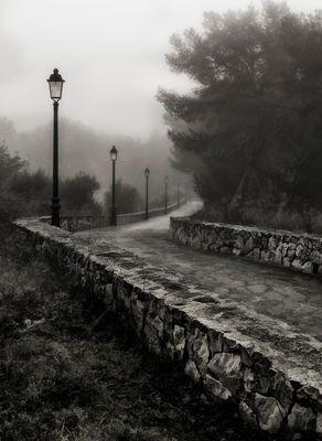 El camino...