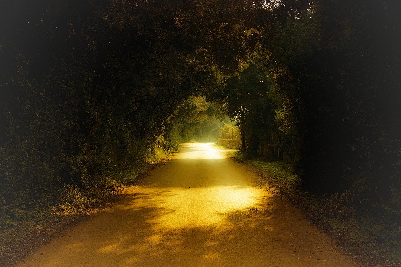 El Camino (Dedicada a MONTSE TRILLA)