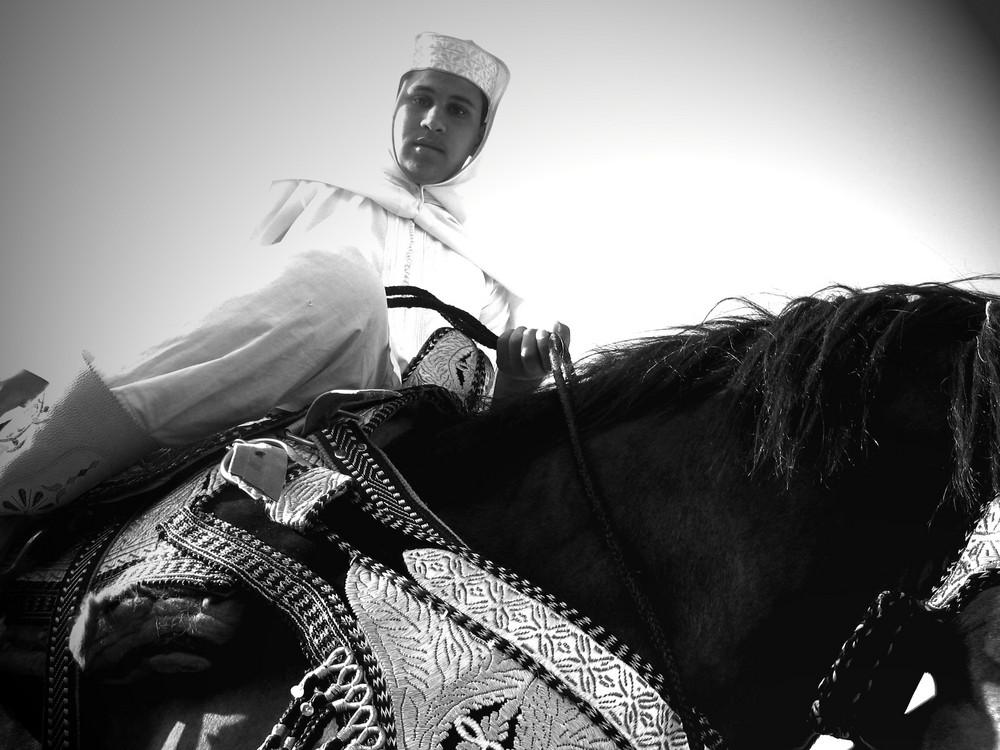 El cavalio mousem salé .au maroc......