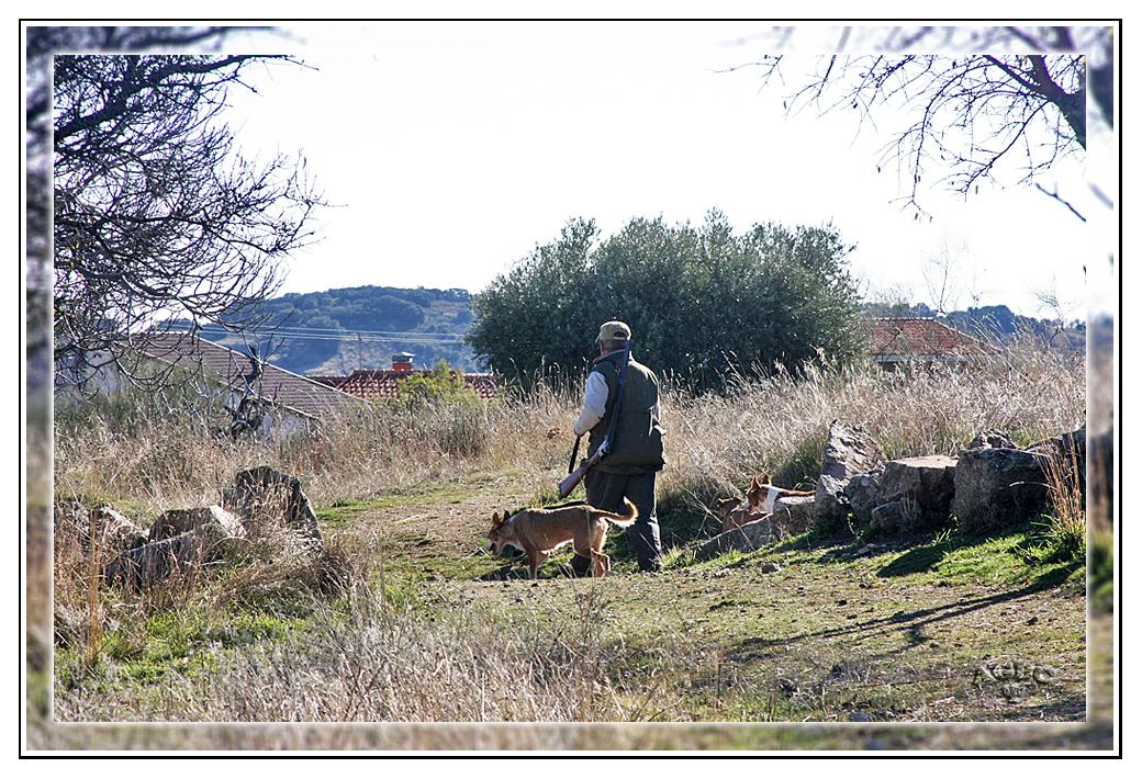 El cazador con sus perros
