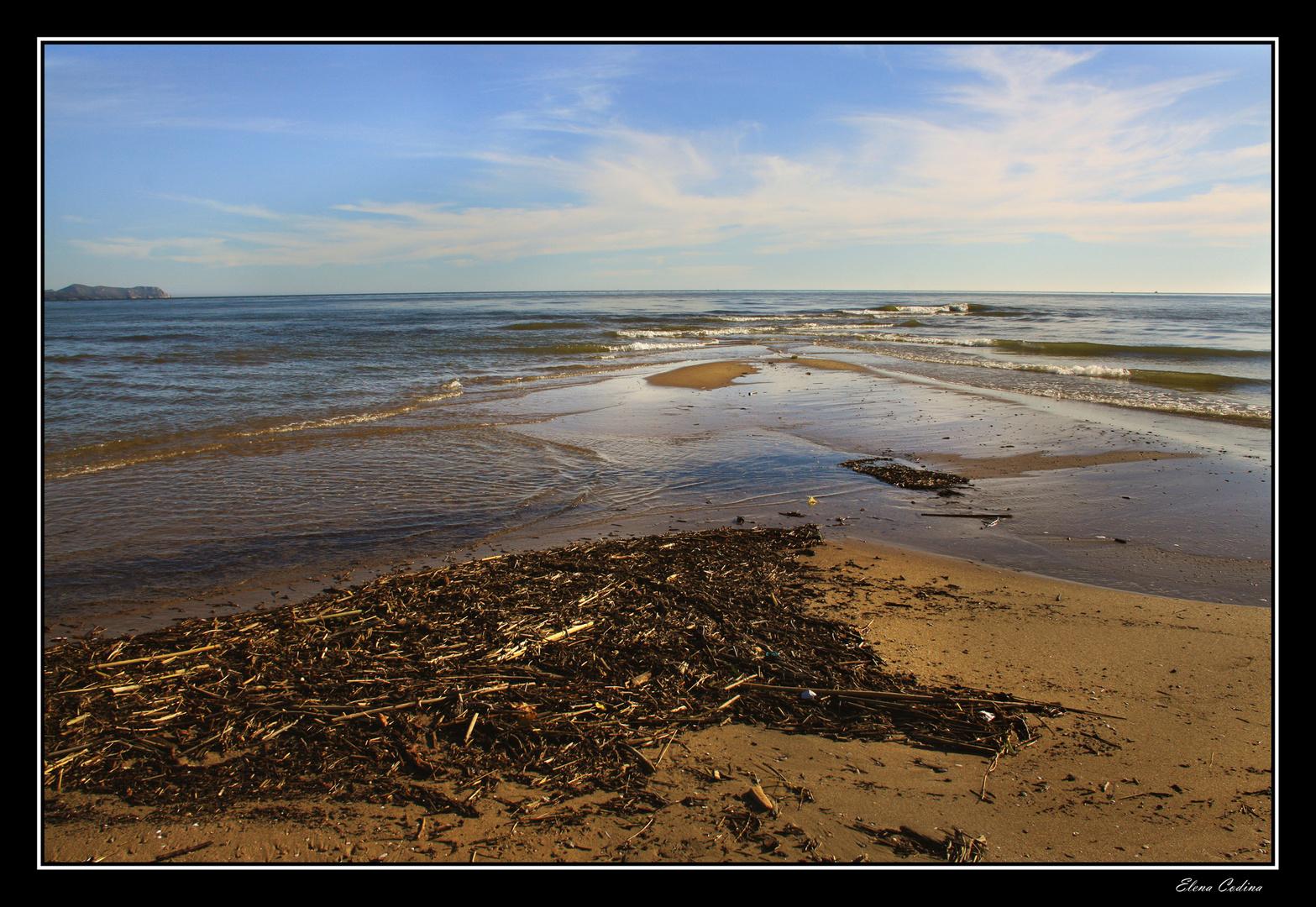 El día despues, de la marea