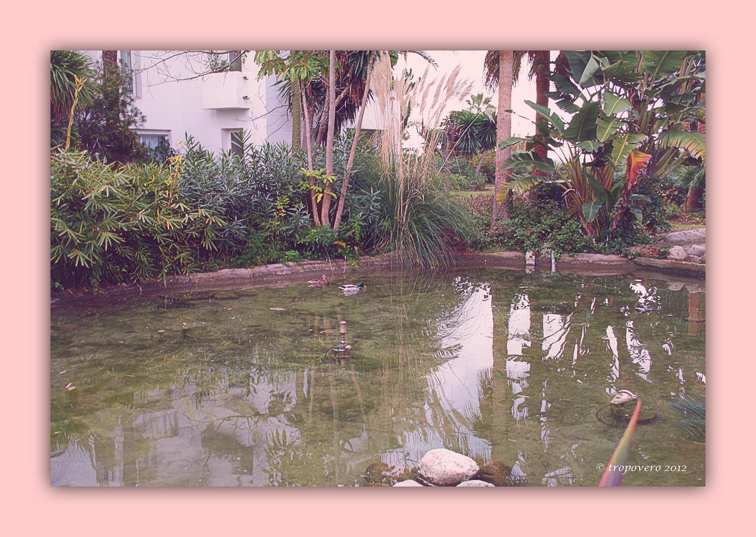 El estanque romántico