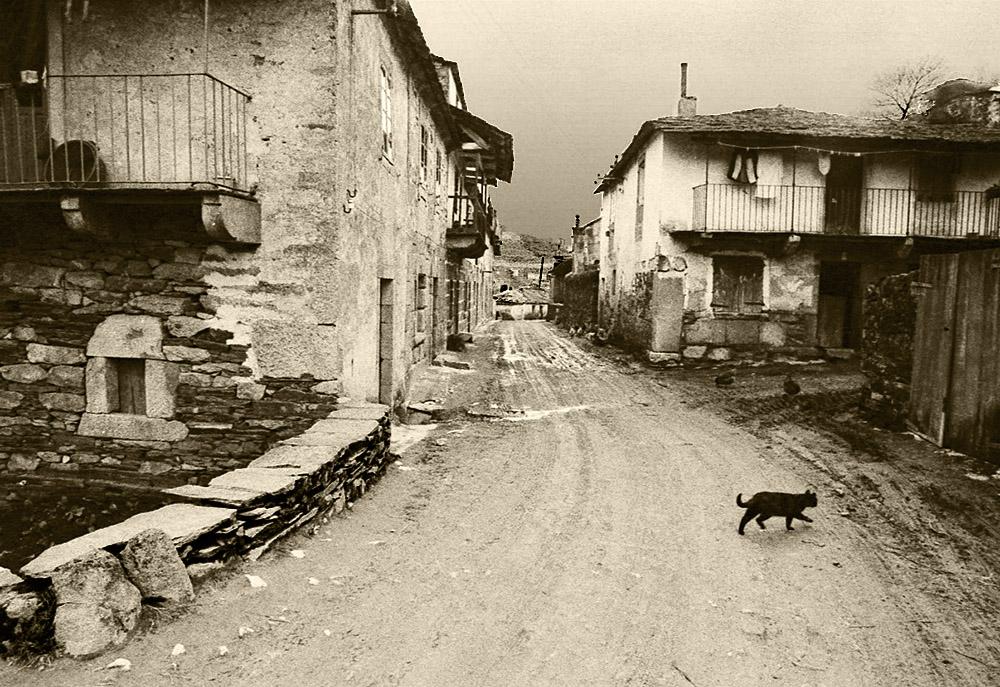 El gato negro-Año 1.965