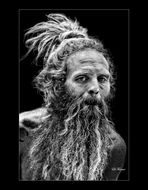 El hippie