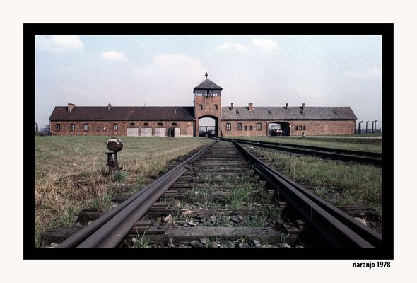 EL HOLOCAUSTO NAZI-LA ENTRADA DE PRISIONEROS - AUSCHWITZ