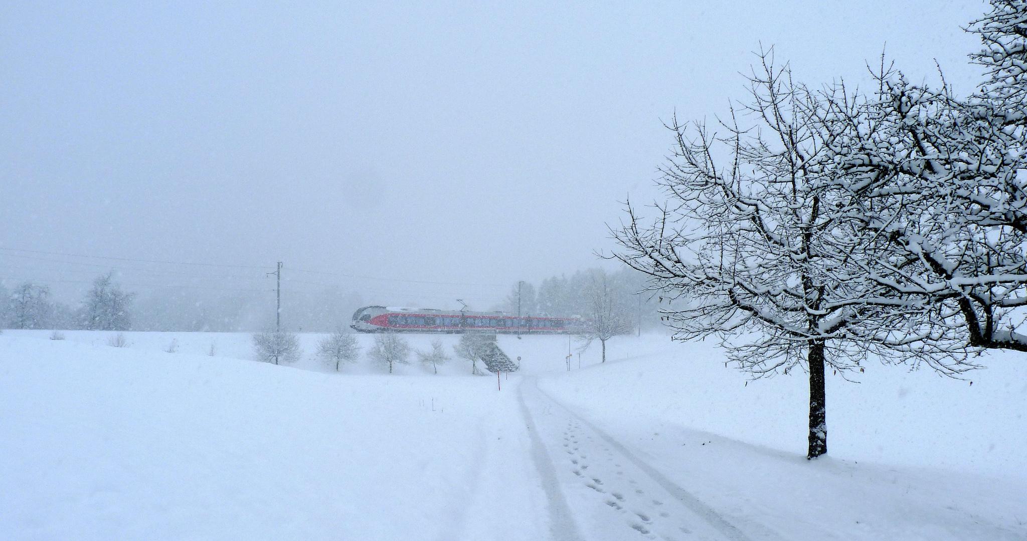 El invierno / L'hiver / Winter...03