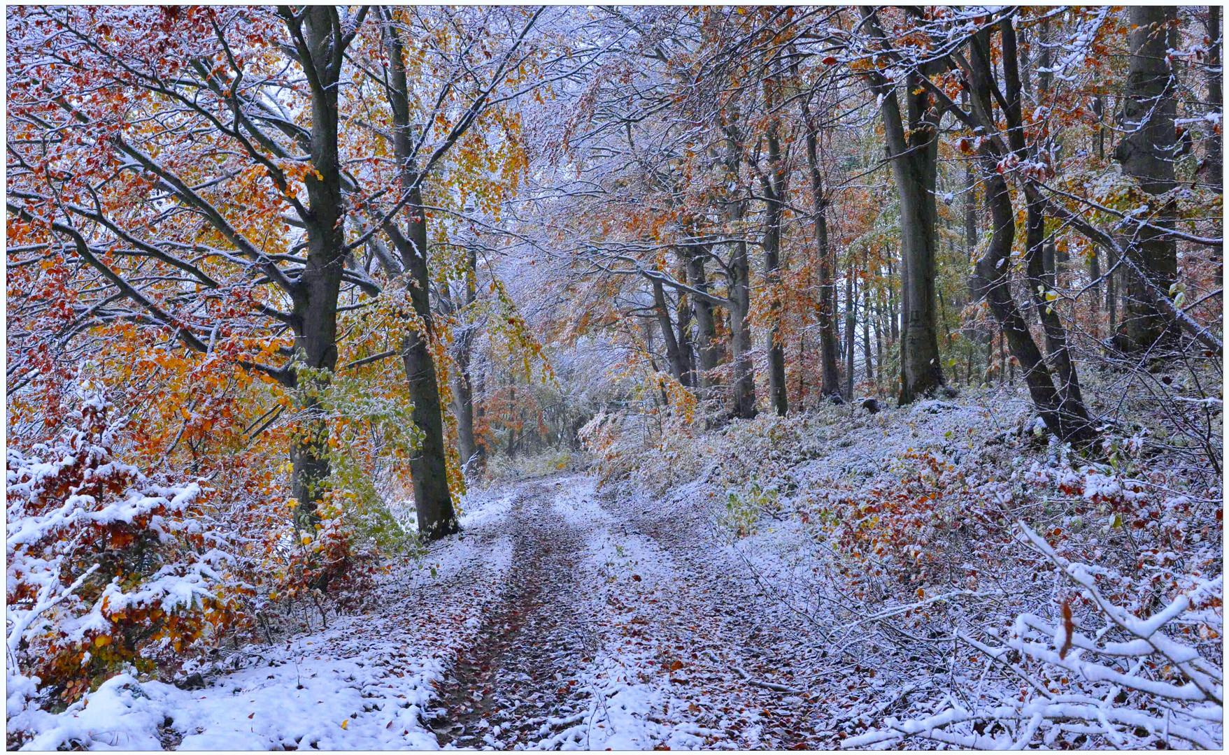 el invierno ya ha empezado (der Winter hat begonnen)