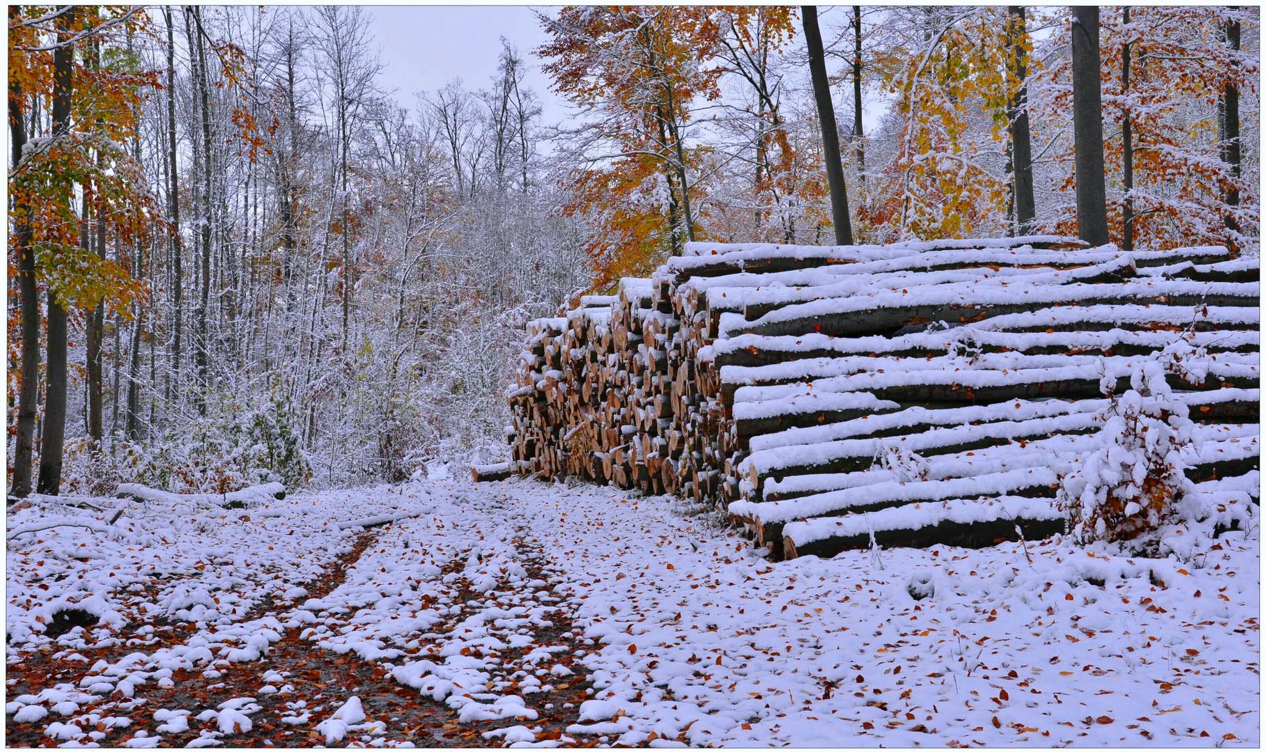 el invierno ya ha llegado (der Winter hat begonnen)
