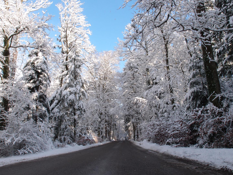 El invierno ya llego