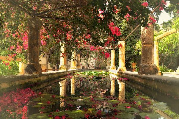 El jardín del Obispo