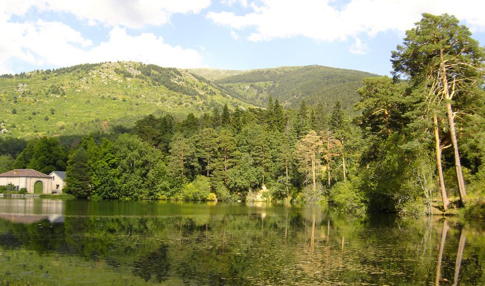 El lago