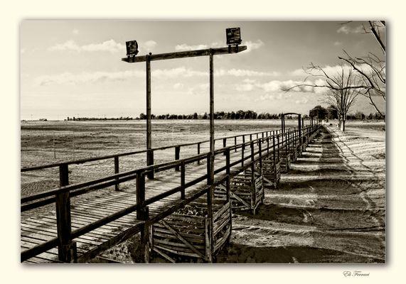 El largo puente de madera
