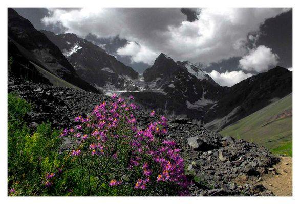 El Morado, Chilenische Anden
