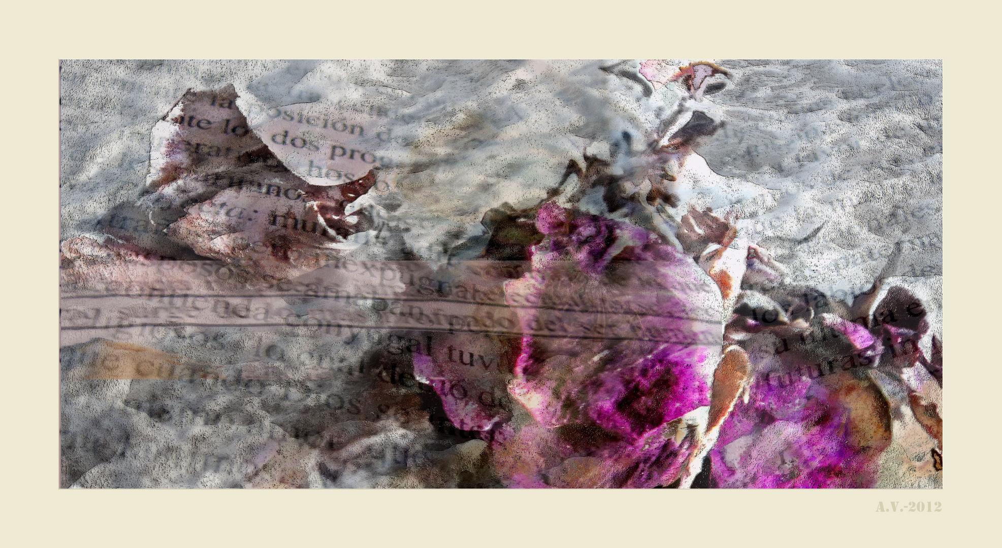 EL NAUFRAGIO. Colaboración con Antiqva 1