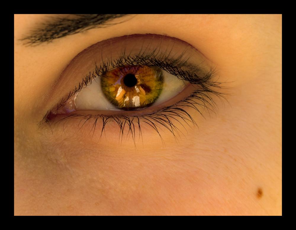 El niño de sus ojos