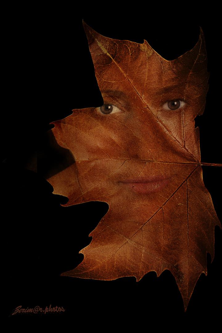 El otoño de mi vida
