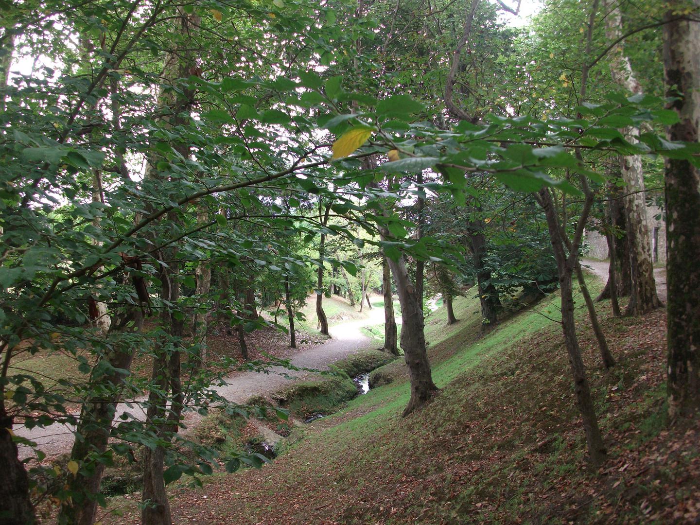 El otoño se acerca