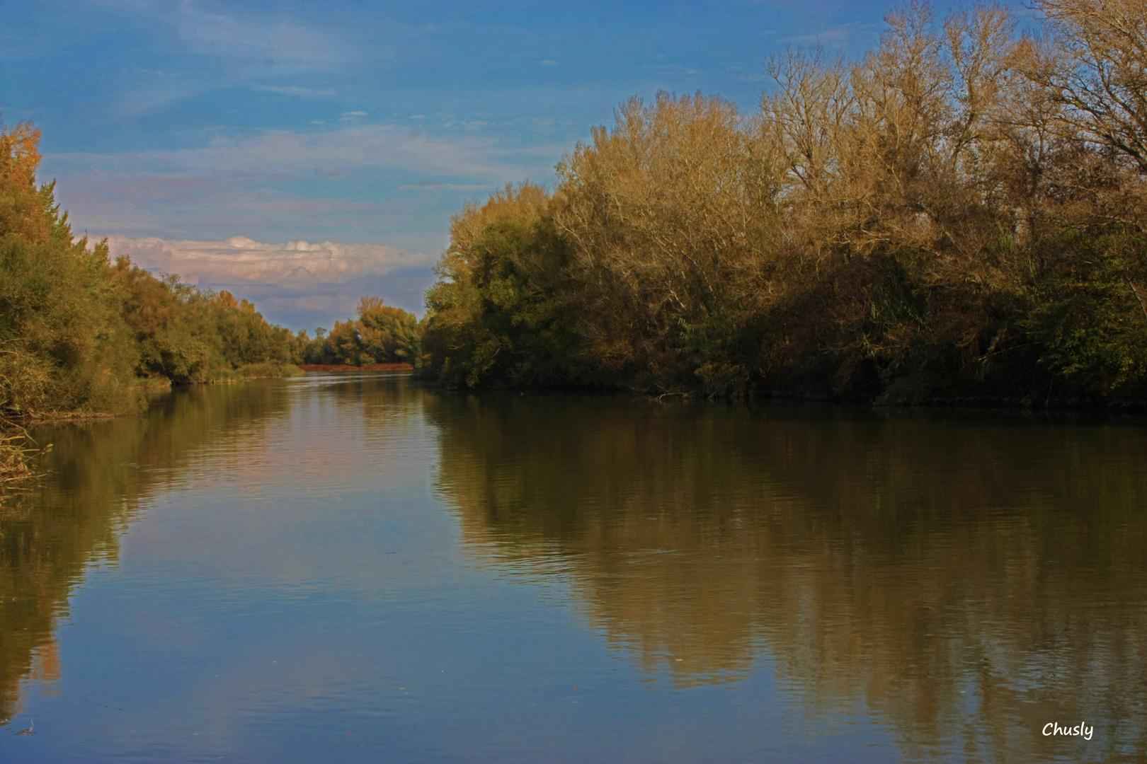 El otoño se mira en el rio
