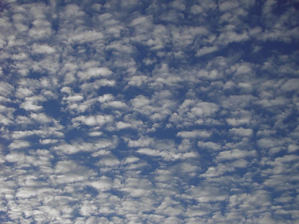 El panal de nubes